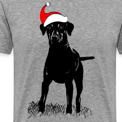 Pinscher Weihnachten Zwergpinscher Geschenk Hund - Männer Premium T-Shirt