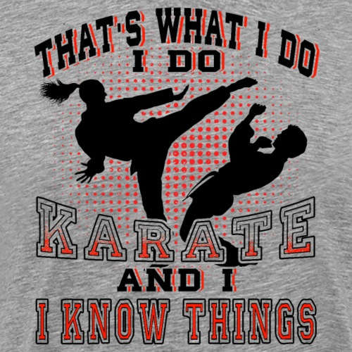 I Do Karate And I Know Things - Männer Premium T-Shirt