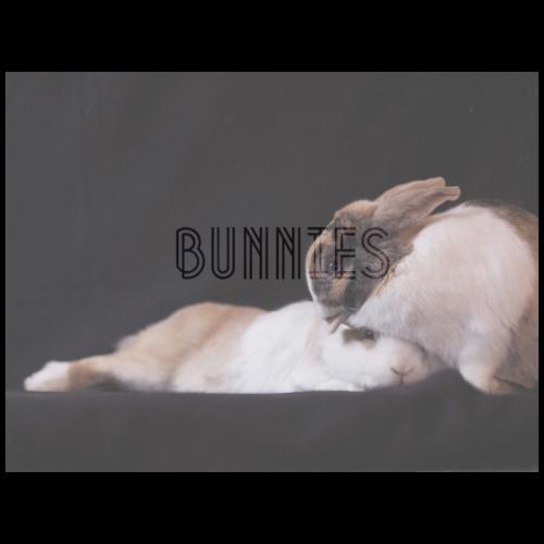 rabbits - Men's Premium T-Shirt