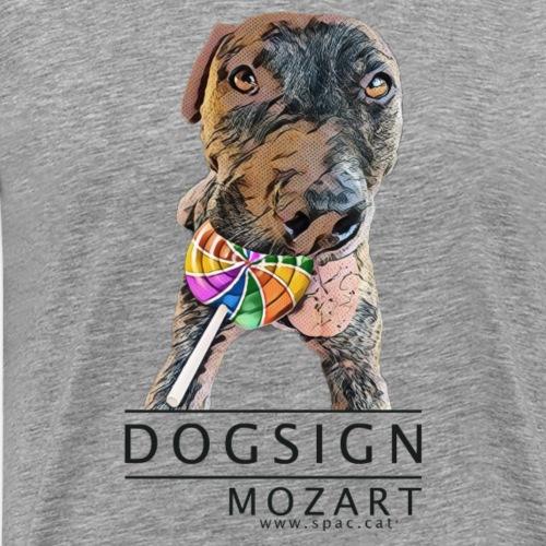 Mozart - Camiseta premium hombre