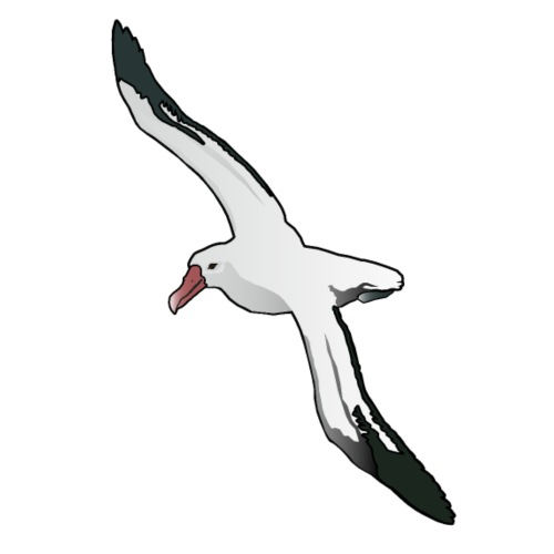 Albatros - Männer Premium T-Shirt