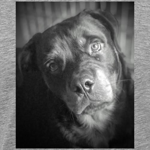 PACO ROTTWEILER ADOPTION - T-shirt Premium Homme