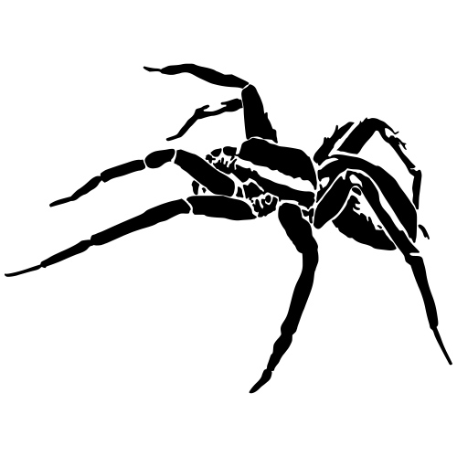 spider - Casquette classique bio