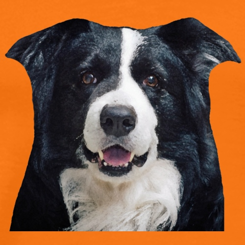 Border Collie - Premium T-skjorte for menn