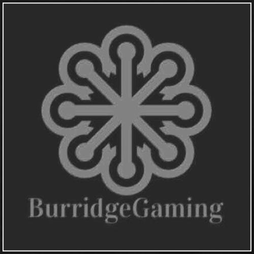 BurridgeGaming Official Merchandise - Men's Premium T-Shirt