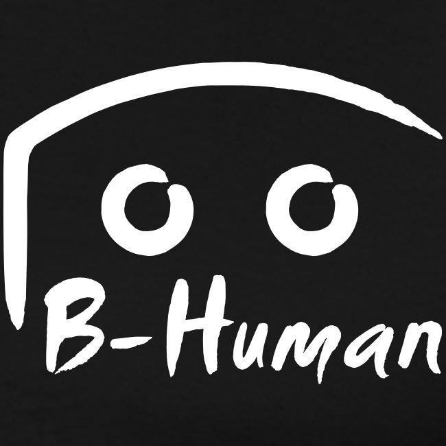 B Human Flagge