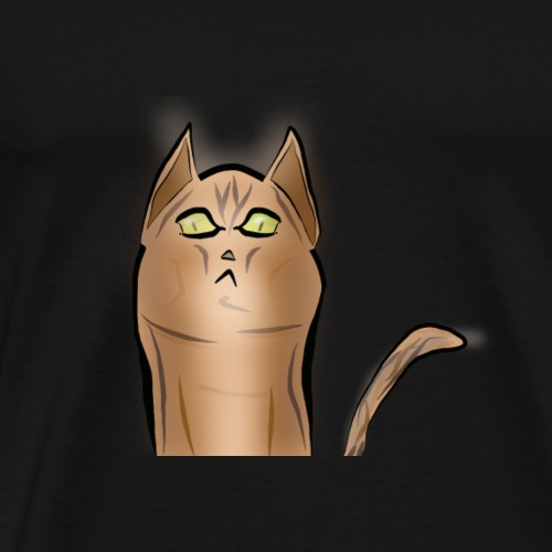 KAT. 3 - Männer Premium T-Shirt