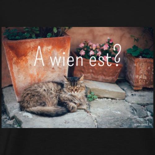 A wien est? - Mannen Premium T-shirt