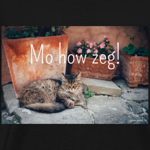 Mo how zeg! - Mannen Premium T-shirt