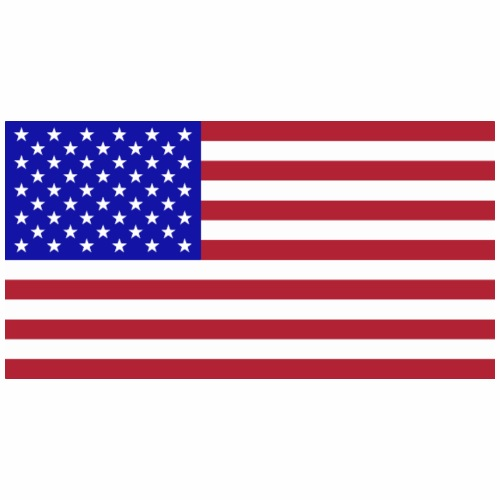 Amerika Flagge - Männer Premium T-Shirt