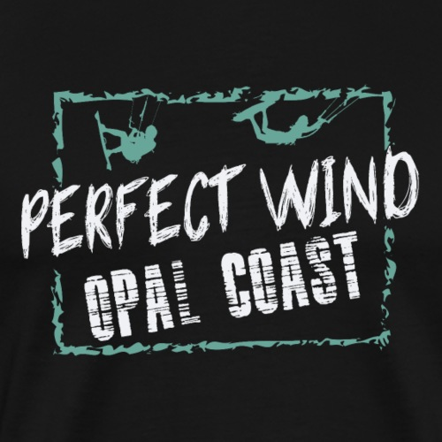 PERFECT WIND OPAL COAST - T-shirt Premium Homme