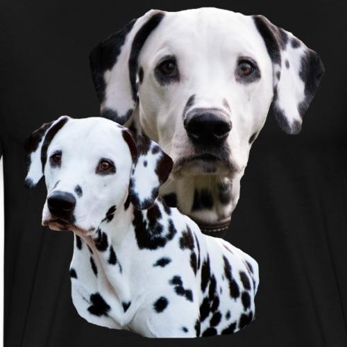 Hund,Hundekopf,Hundesport,Dalmatiner,Hunderasse, - Männer Premium T-Shirt