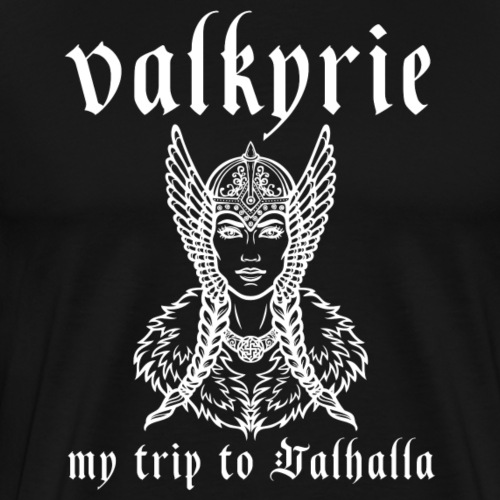 Valkyrie to Valhalla - Camiseta premium hombre