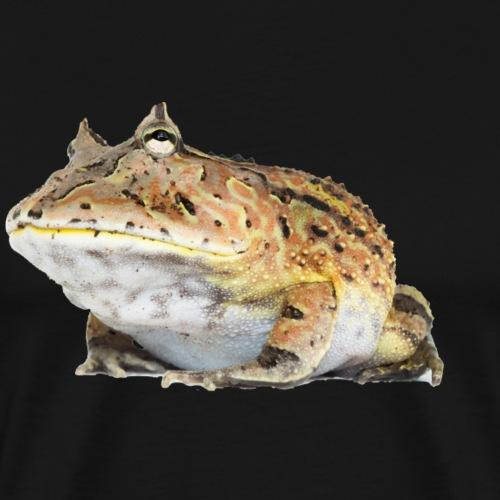 Fantasy Frog - Mannen Premium T-shirt