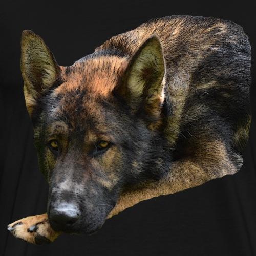 Schäferhund,Hundekopf,Hundeliebhaber,Hundeliebe, - Männer Premium T-Shirt