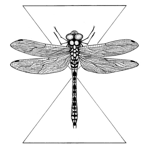 Dragonfly - Männer Premium T-Shirt
