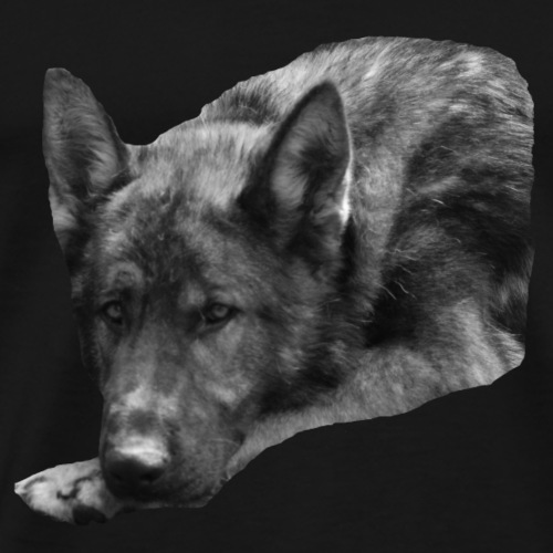 Hundekopf,Schäferhund,Hundesport,Hundeliebhaber, - Männer Premium T-Shirt