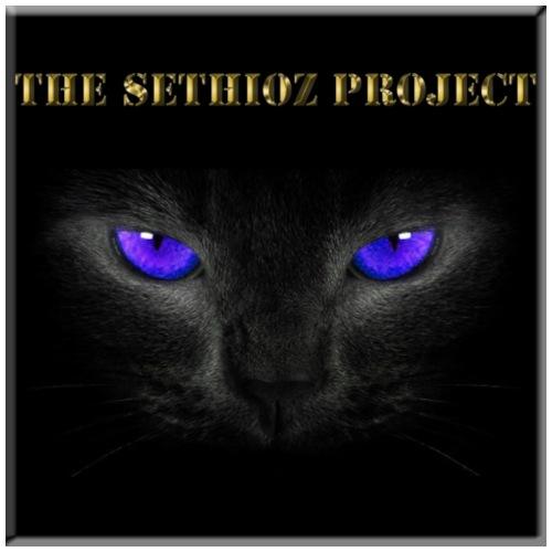 The Sethioz Project Black Cat - Men's Premium T-Shirt