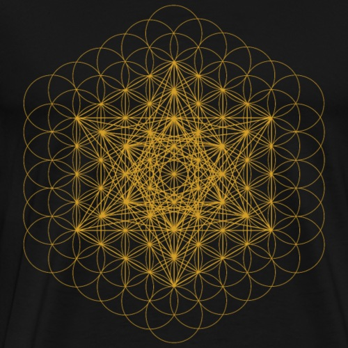 Metatron upgrade - Men's Premium T-Shirt