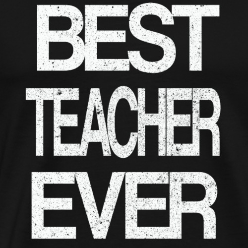 BEST TEACHER Lehrer Ausbilder Dozent Mentor - Männer Premium T-Shirt