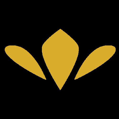 Rutger Icon Gold - Premium T-skjorte for menn