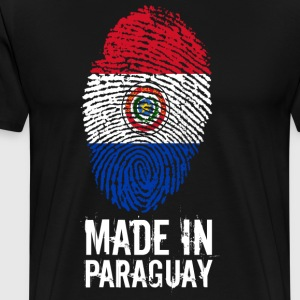 Made In Paraguay / Paraguay - Premium T-skjorte for menn