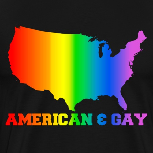 american and gay - Men's Premium T-Shirt