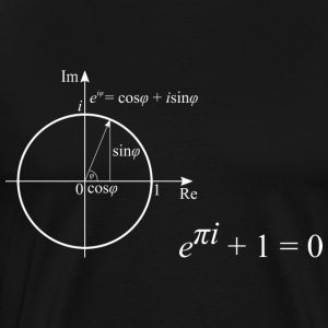 The most beautiful pattern of mathematics - Men's Premium T-Shirt