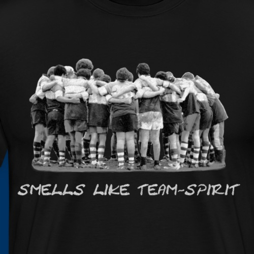 Team-Spirit H - Männer Premium T-Shirt