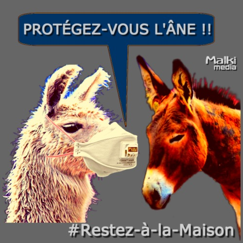 PROTEGEZ-VOUS L'ÂNE !! - Coronavirus - Men's Premium T-Shirt