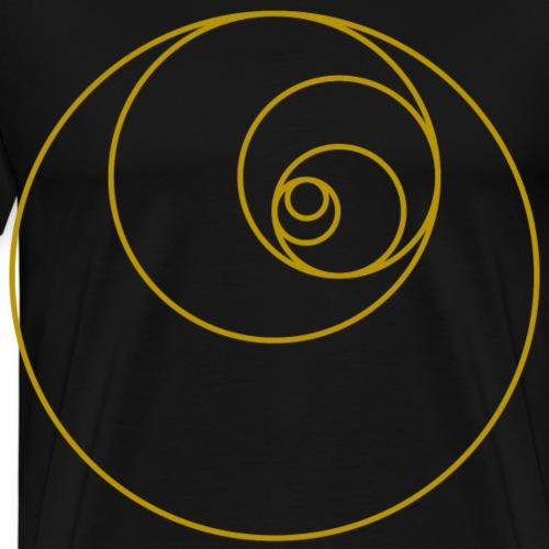 Fibonacci Kreise Spirale Goldener Schnitt