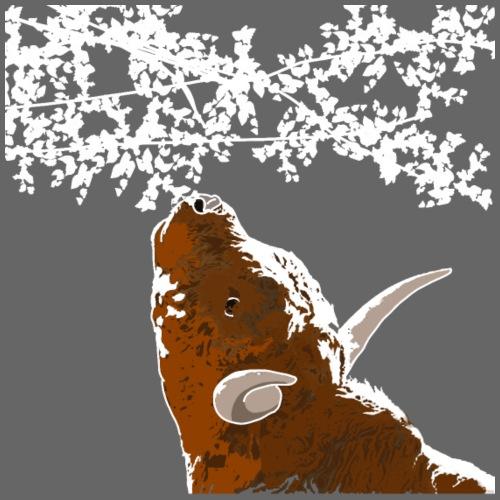 Hochlandrind frisst vom Baum