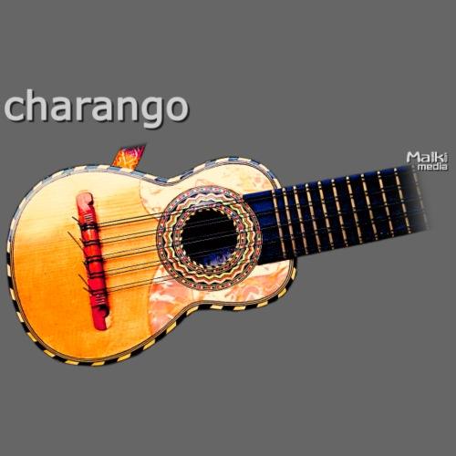 Charango - Männer Premium T-Shirt