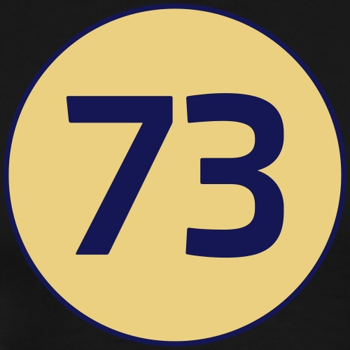 73 the best number Big Bang Zahlenrätsel Theorie - Men's Premium T-Shirt