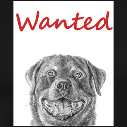 WANTED Rottweiler
