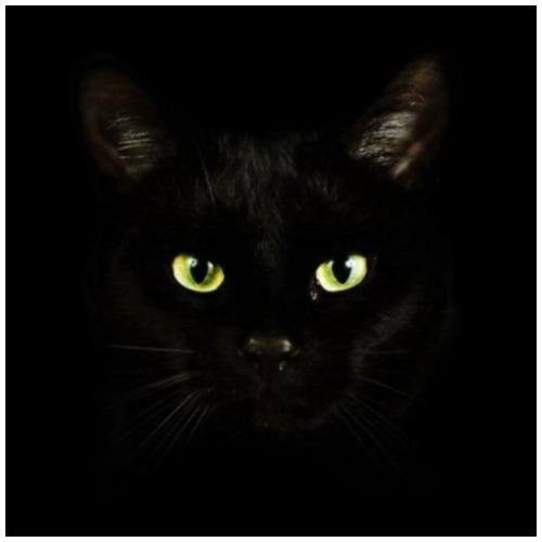 Katzen Augen Schwarz - Männer Premium T-Shirt