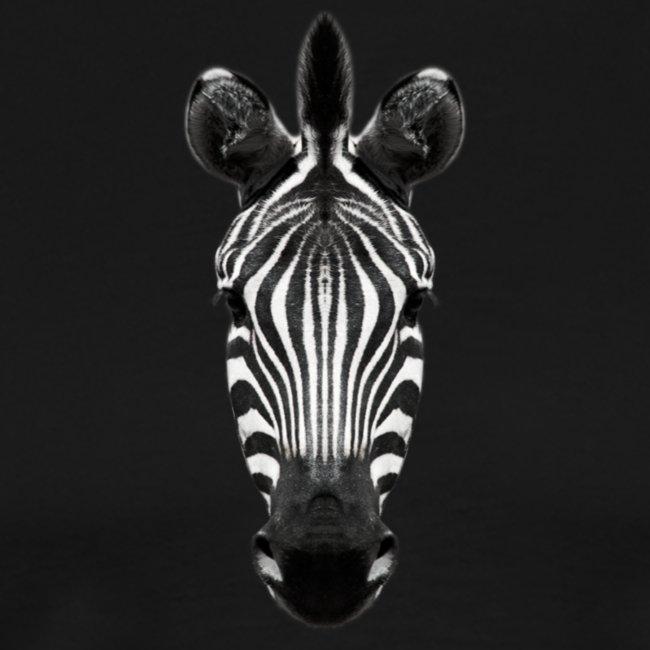 Zebra Blick