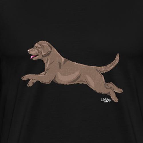 perrovain3 - Premium T-skjorte for menn