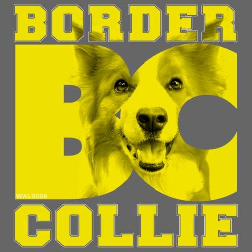 Border BC Collie VI - Miesten premium t-paita