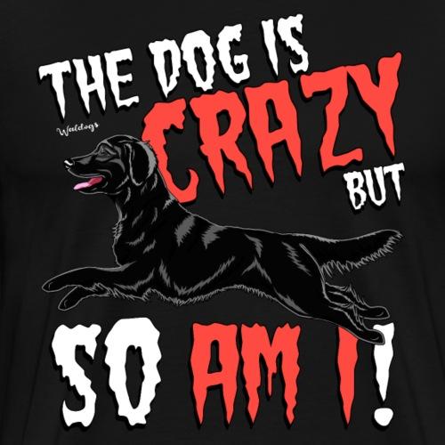 Flattie Crazy 2 - Men's Premium T-Shirt