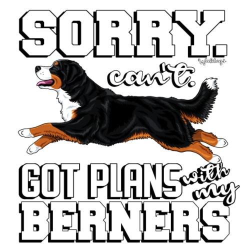 Bernese Berner Plans 2 - Miesten premium t-paita