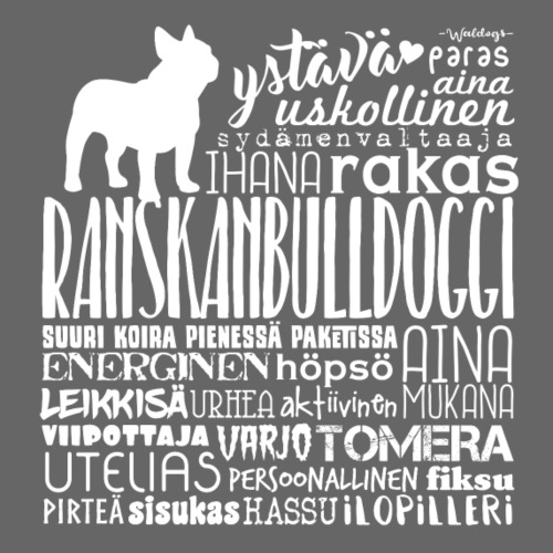 Ranskis Sanat V - Miesten premium t-paita