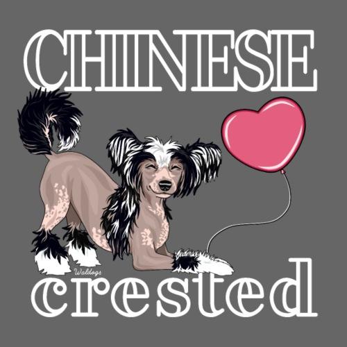 Chinese Crested III - Miesten premium t-paita