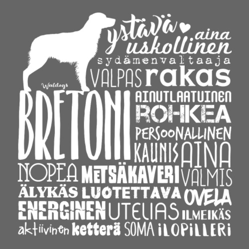 Bretoni Sanat V - Miesten premium t-paita
