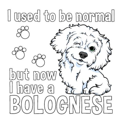 Bolognese Normal - Miesten premium t-paita