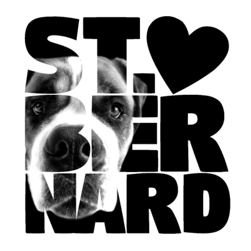 NASSU St Bernard 002 - Miesten premium t-paita