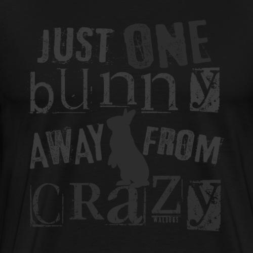 One Bunny Crazy B - Miesten premium t-paita