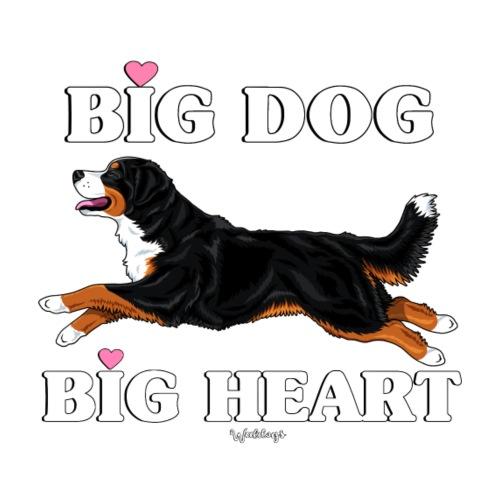 Bernese Berner Big - Miesten premium t-paita
