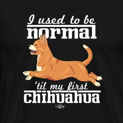 chihunormal3 - Men's Premium T-Shirt