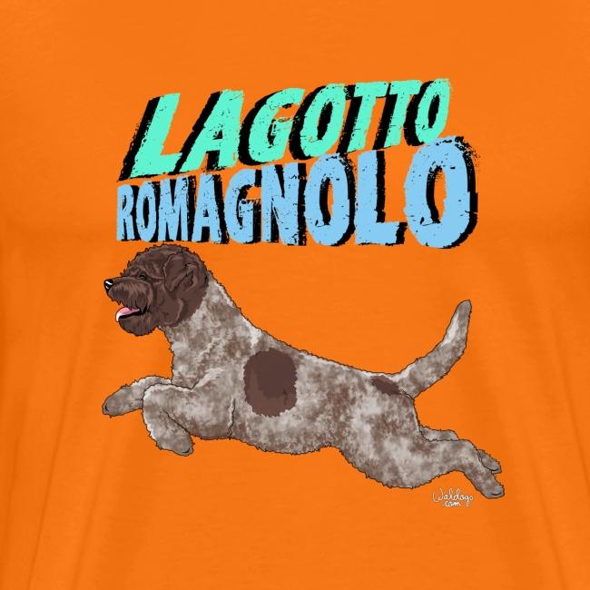 lagottoromagnolo5